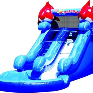 Picture of Lil' Kahuna Water Slide